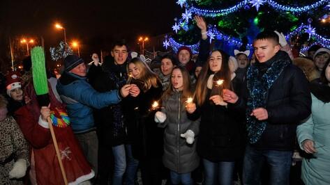 Новогодняя ночь в Воронеже будет теплой и бесснежной