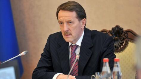 Алексей Гордеев отчитается перед депутатами Воронежской облдумы 10 апреля