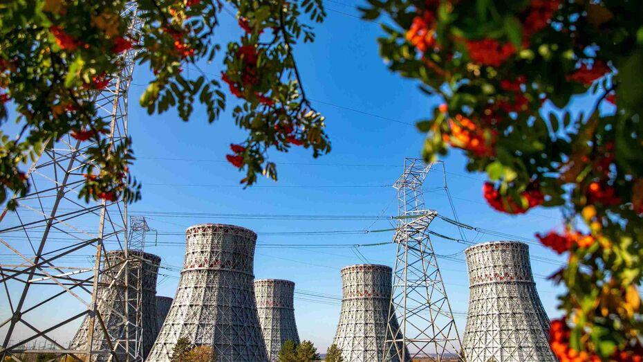 Нововоронежская АЭС завершила подготовку к осенне-зимнему максимуму