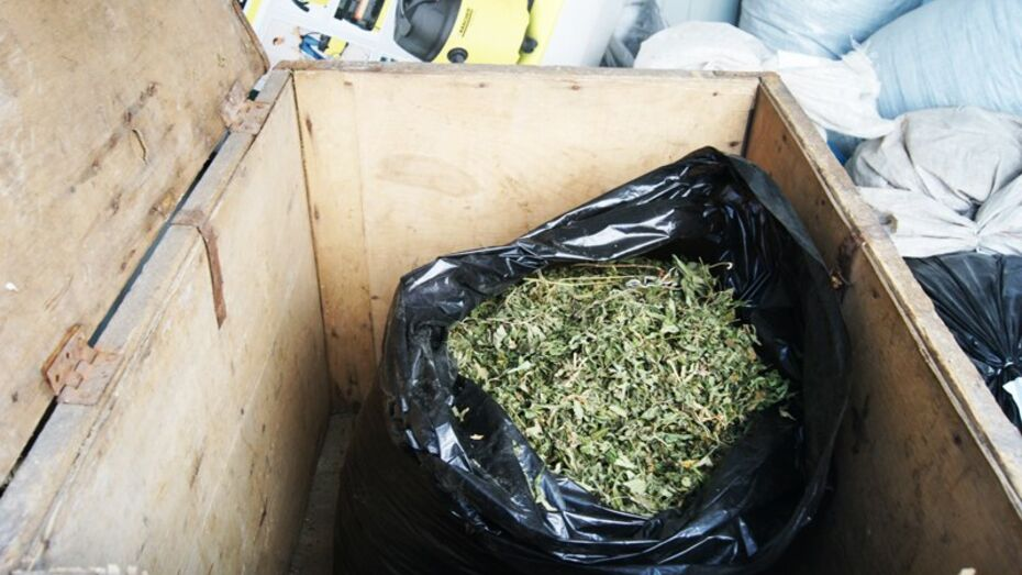 В Россоши парень попался на торговле марихуаной