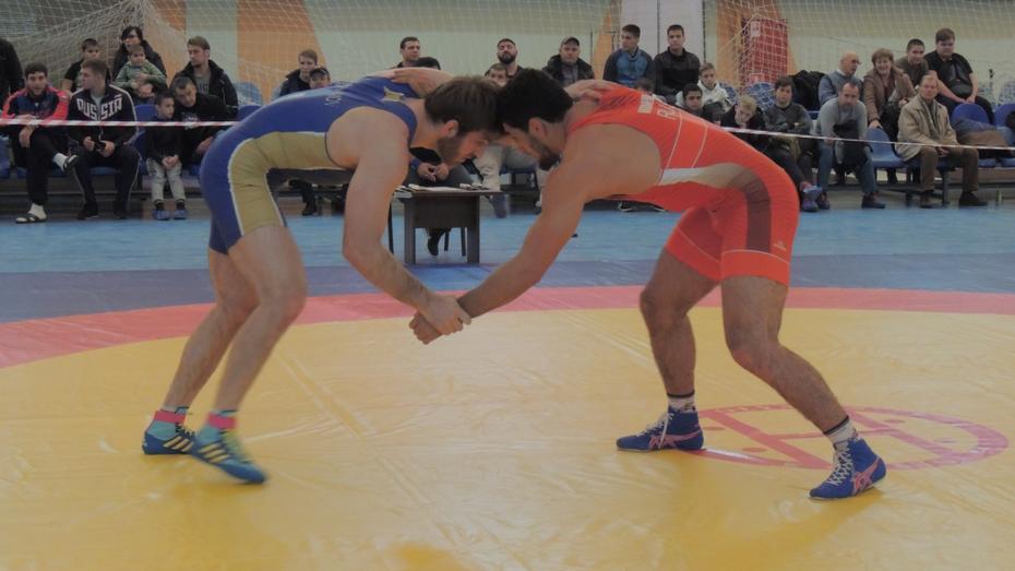 Чемпионат России по борьбе в абсолютной весовой категории прошел в Воронеже