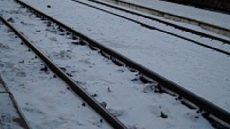С 20 января в Воронежской области отменят семь электричек