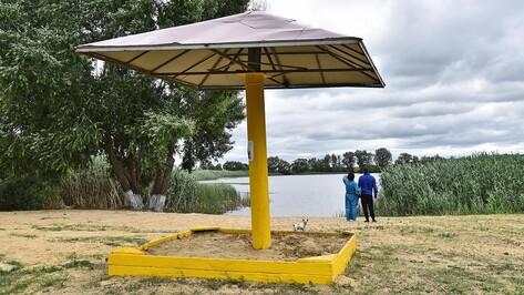 В Бутурлиновском районе запретили купание в 2 прудах