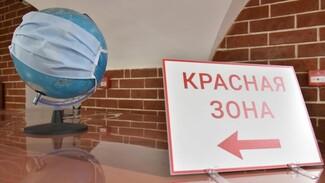 Коронавирус за сутки подтвердился у 224 жителей Воронежской области