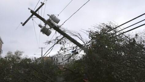 В Рамонском районе из-за урагана около 1,9 тыс человек остались без электричества
