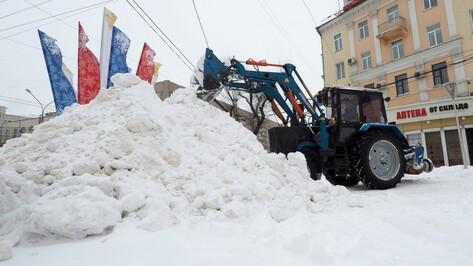 «Процесс уборки не организован». Как власти Воронежа боролись со снегом и коммунальщиками