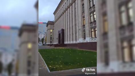 У правительства Воронежской области появился аккаунт в TikTok