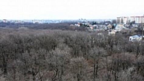 Воронежские власти выступили против застройки  участка рядом с парком «Динамо»