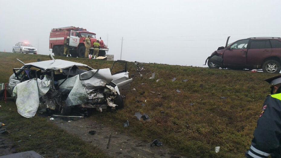 Два человека погибли в утренней аварии на трассе в Воронежской области