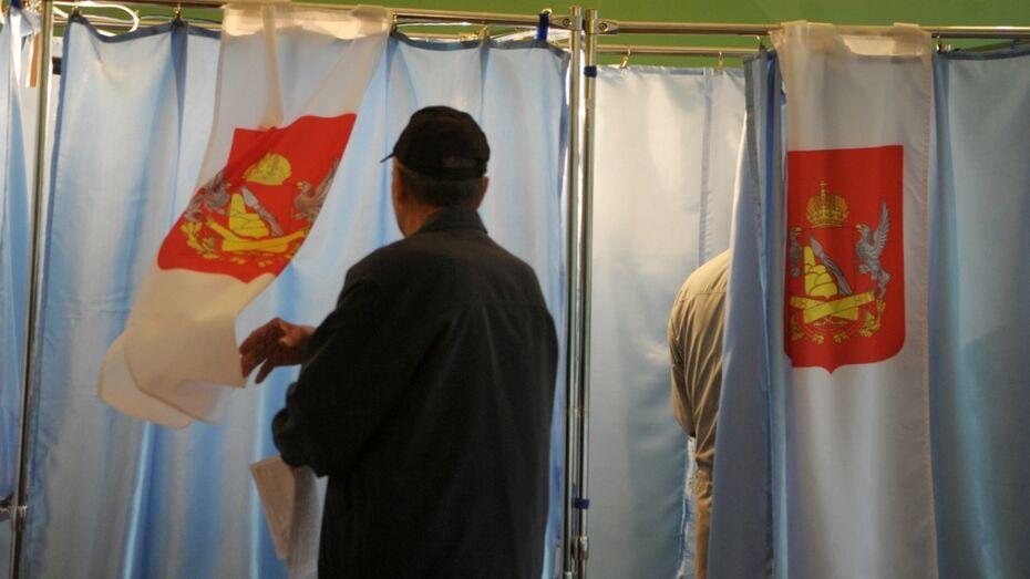 Большинство воронежцев высказались за возвращение выборов мэра