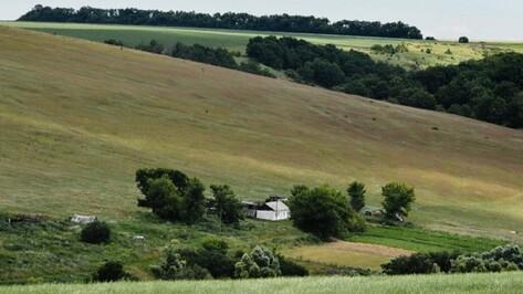 В Воронежской области назвали лучшие сельские поселения
