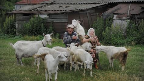 Заброшенные хутора: как пустеют воронежские деревни. Борок