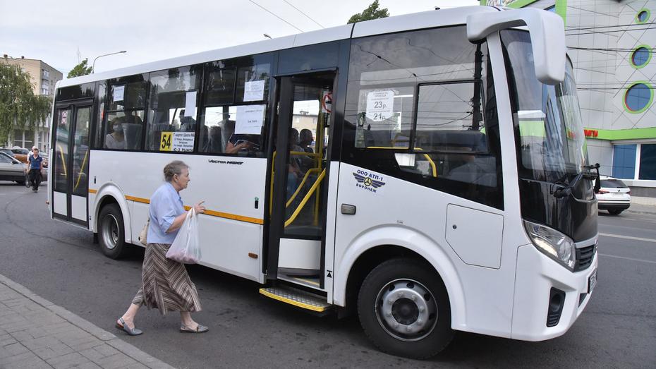 Новый автобусный маршрут начнет работу в Воронеже с 24 сентября