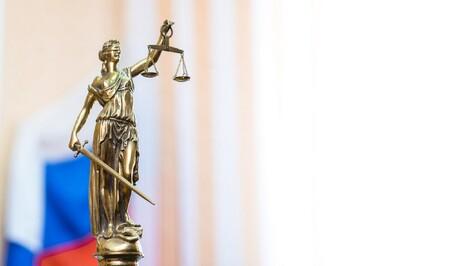 В Воронежской области суд заново рассмотрит дело освобожденного от наказания виновника ДТП