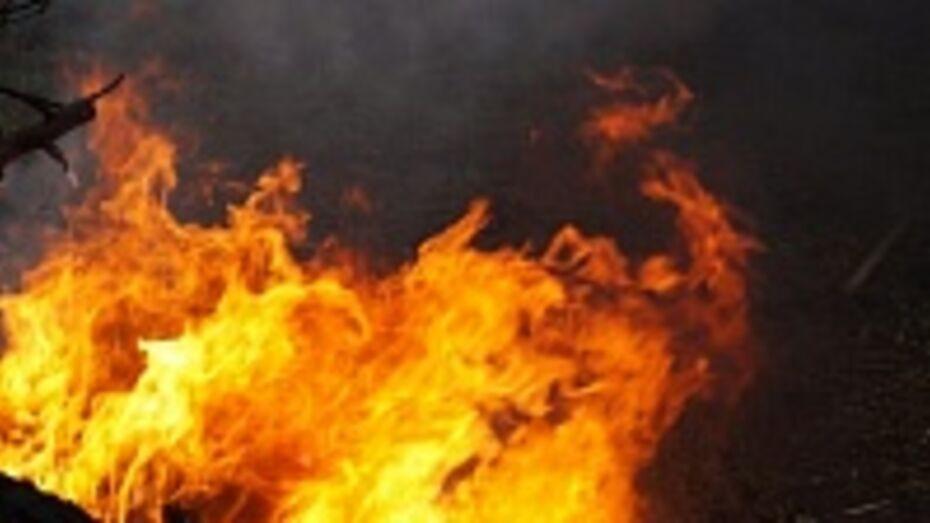 В Эртильском районе из-за пожара семья осталась без крова и имущества