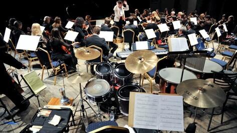 В Воронеже появится «Оркестровая академия»