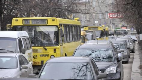 «Город и транспорт»: отмену «Народного маршрута» в Воронеже мало кто заметит