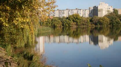 Итоги недели. Что важного произошло в Воронежской области с 20 по 26 сентября