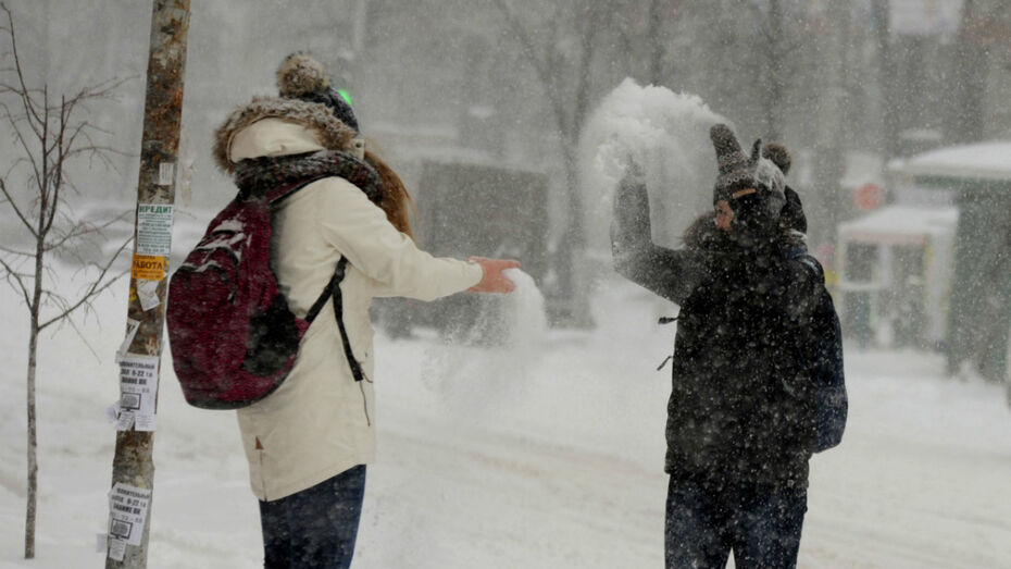 Метеорологи рассказали, когда в Воронеже выпадет снег