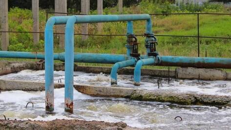 Вред по необходимости. Почему под Воронежем сбрасывают в реку загрязненные стоки