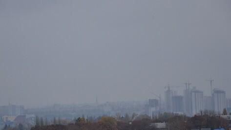 В Воронеже пошел первый снег