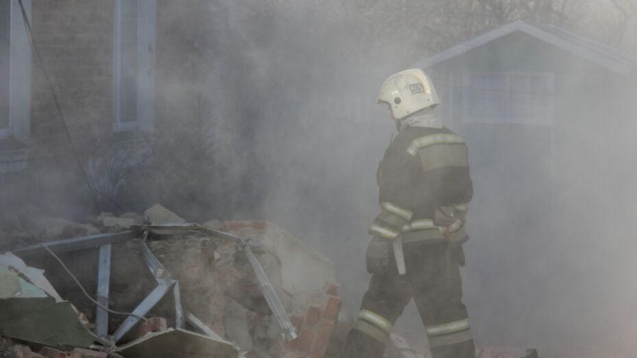 Семья погибшего при взрыве газа в Воронежской области получит 100 тыс рублей