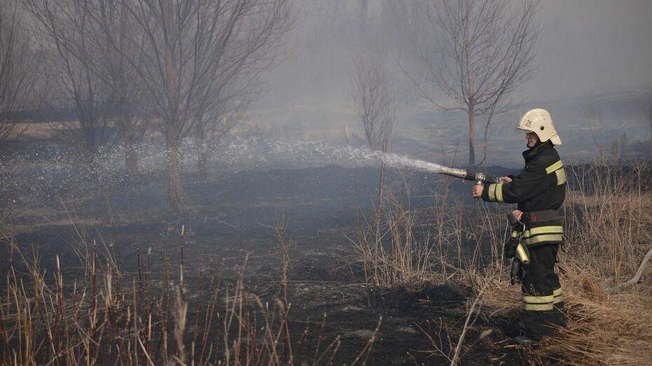 За последнюю неделю марта в Россошанском районе произошло 19 пожаров