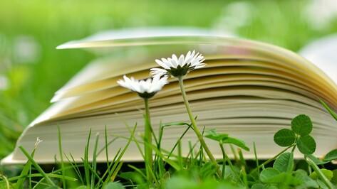 В Воронеже в парках и скверах откроют летние читальни