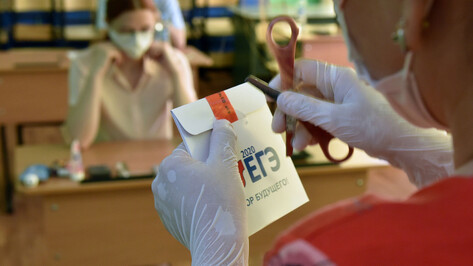 ЕГЭ по русскому на 100 баллов сдали 28 выпускников из Воронежской области
