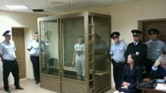 Адвокаты Савченко попросили воронежский суд отпустить ее под миллионный залог