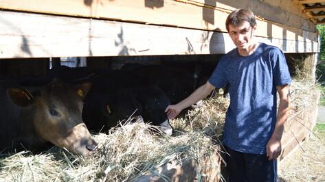 Воробьевские фермеры получили на развитие животноводства 7,5 млн рублей