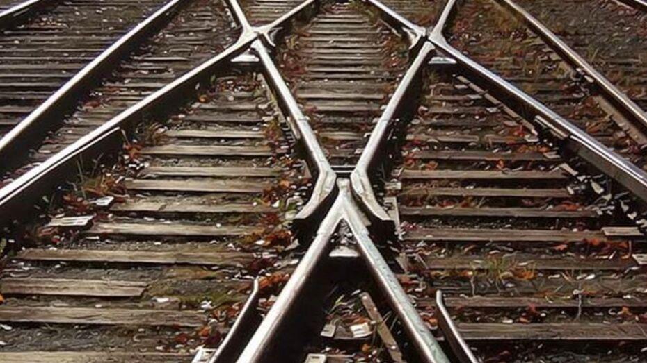 Под Воронежем двое мужчин пытались похитить два мешка деталей с железной дороги