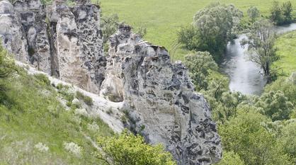 Экскурсионные прямые электрички в воронежское Дивногорье пустят 1 мая