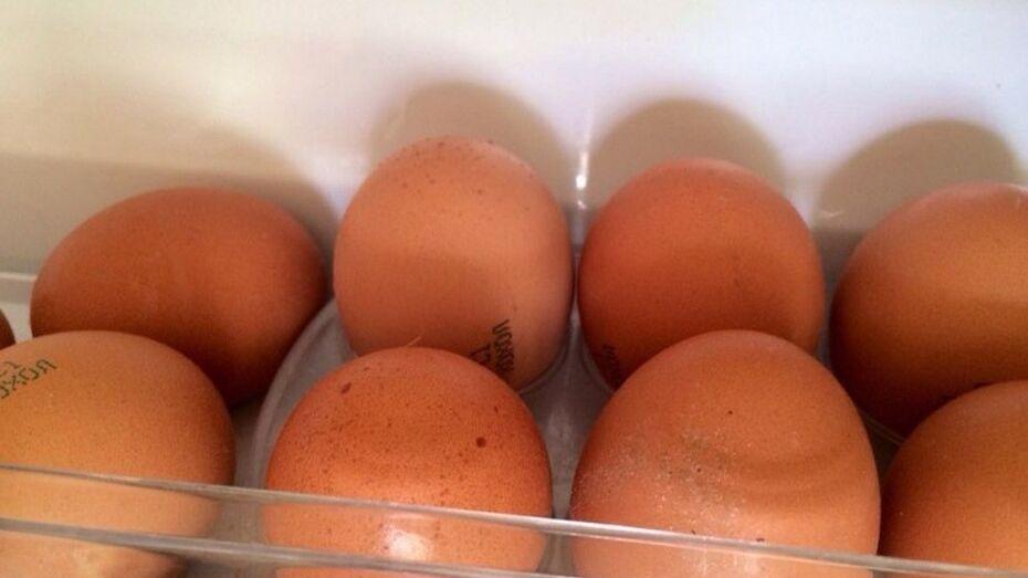 В российских регионах могут ввести максимальную цену на яйца и сахар