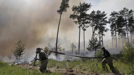 Гидрометцентр объявил штормовое предупреждение в 4 районах Воронежской области