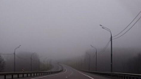 В Воронежской области дорожники на случай паводка держат на контроле 11 мостов