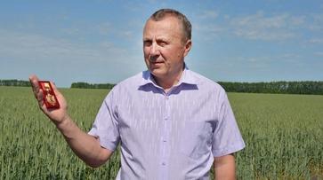 Руководитель нижнедевицкого сельхозпредприятия получил «Благодарность от земли Воронежской»