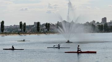 Воронежские гребцы взяли 6 золотых медалей на всероссийских соревнованиях