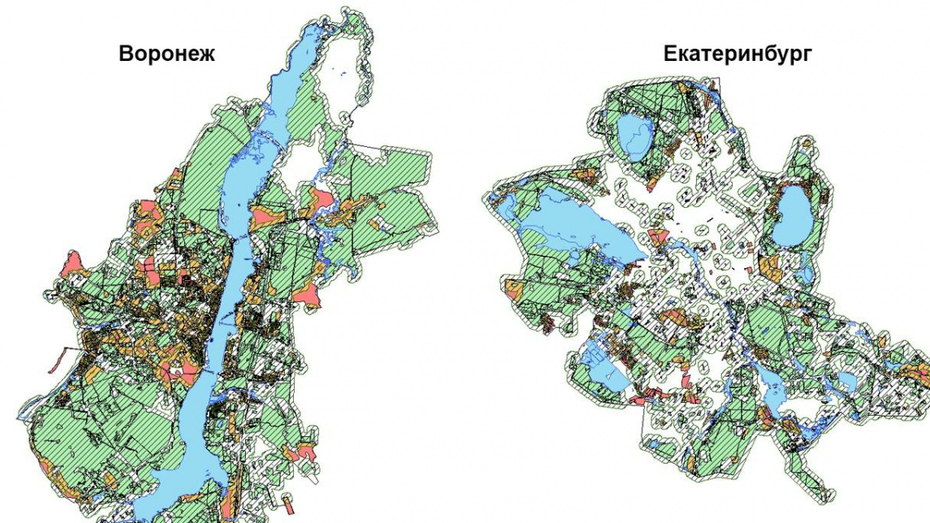 Ученые МГУ признали Воронеж одним из самых «зеленых» городов России
