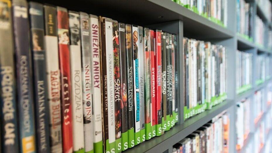 Россошанские полицейские изъяли тысячу контрафактных DVD-дисков