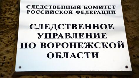 Воронежские следователи отметили День создания Следственного комитета