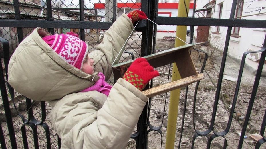 Лискинцы заняли первое место в акции Воронежского заповедника «Покормите птиц!»