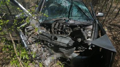 ВАЗ врезался в дерево в Воронежской области: пострадали двое взрослых и младенец