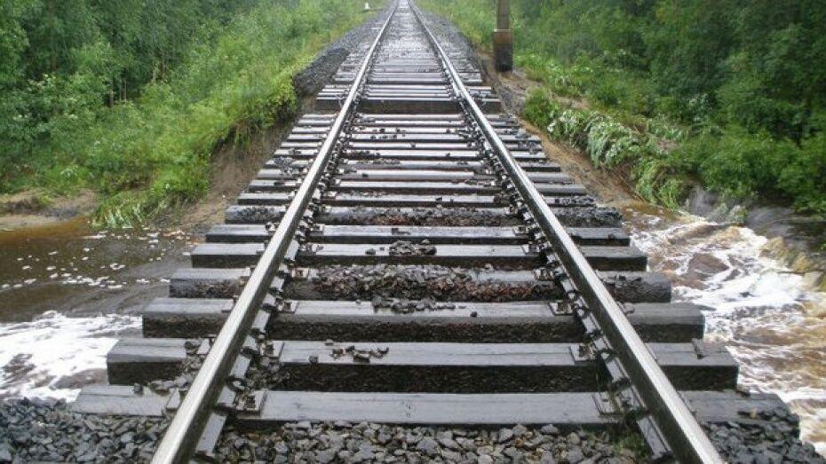 Месячник «Безопасная железная дорога» стартовал в Воронежской области