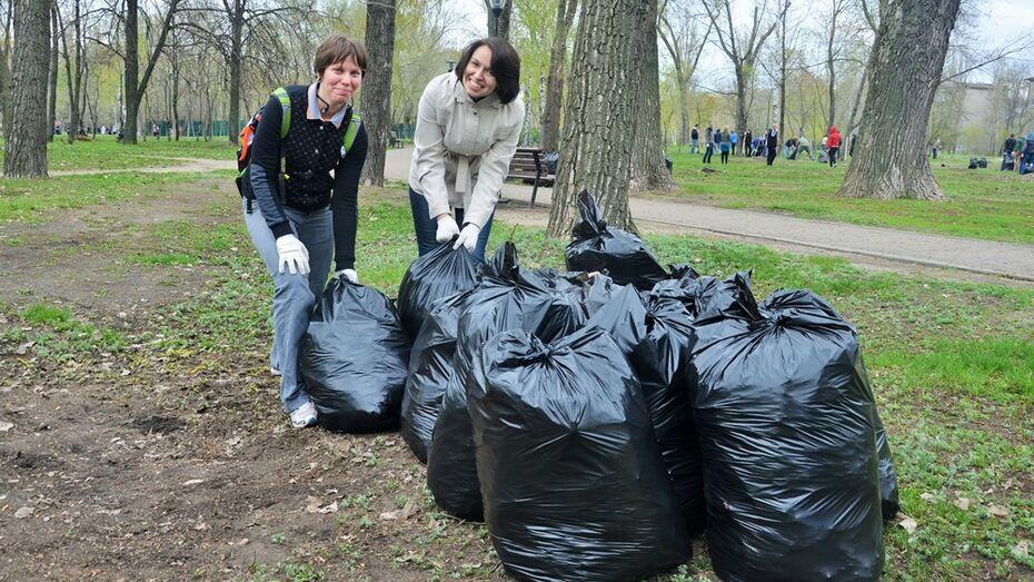 Из воронежского парка «Южный» во время субботника вывезли 2 тыс мешков мусора