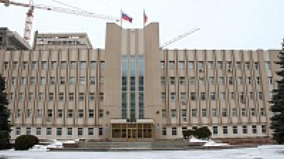 Политические партии остались без Общественной палаты Воронежской области