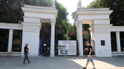 Подрядчик: колоннаду воронежского «Орленка» рушить не будут