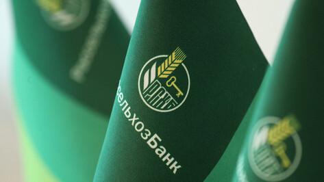 «Россельхозбанк» выдаст воронежцам 1,8 млрд льготной сельской ипотеки к Новому году
