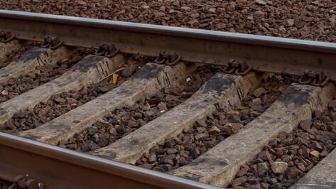 Реконструкция воронежского вагонного депо начнется в 2017 году