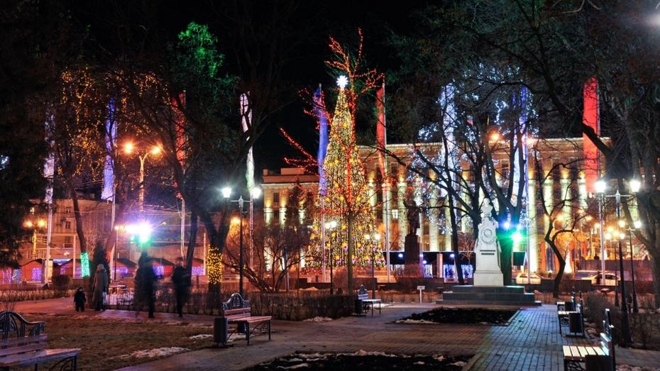 Воронеж украсила новогодняя иллюминация (ФОТО)